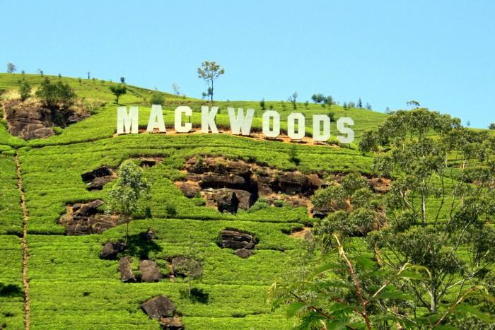 Mackwoods / foto: dovolenkářka
