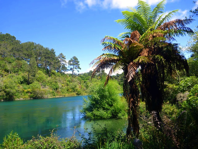 Nový Zéland / Foto: dovolenkářka