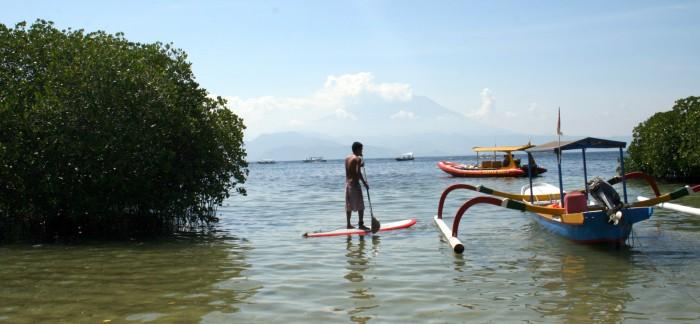 Klidné moře u Mangrovníkového lesu / foto: dovolenkářka