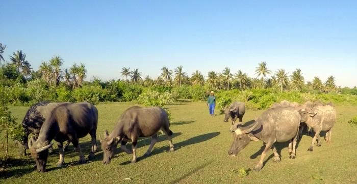 Lombok - Kuta / Foto: dovolenkářka
