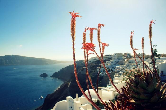 Santorini - Oia & Fira / Foto: dovolenkářka